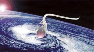MicroMacroCosmo, 1999